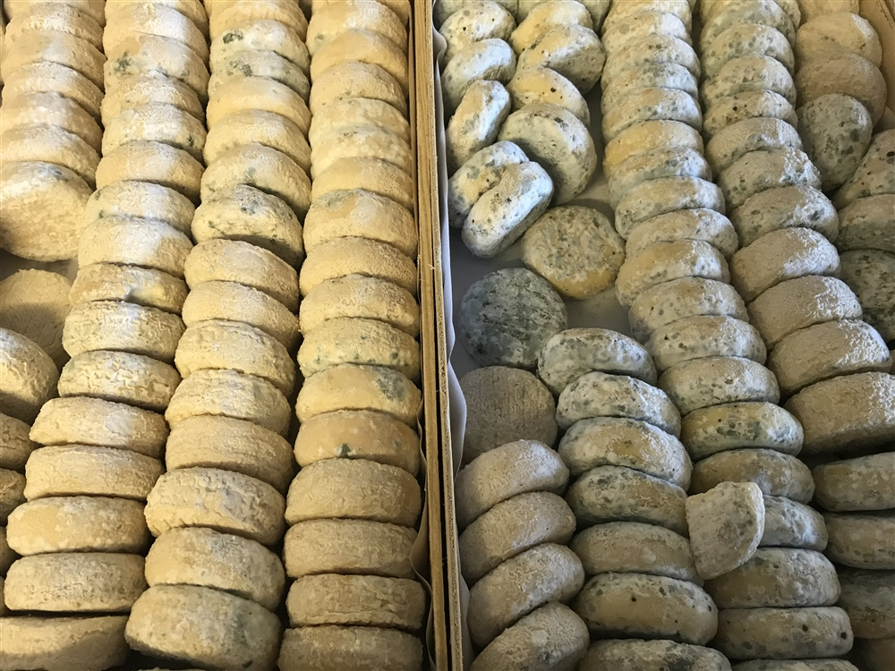epicerie_nimes_fromagerie-peytot
